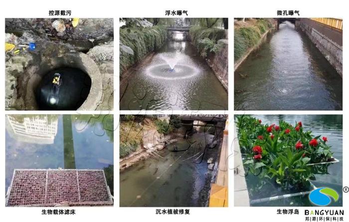 邦源环保水生态系统构建用到的部分技术手段