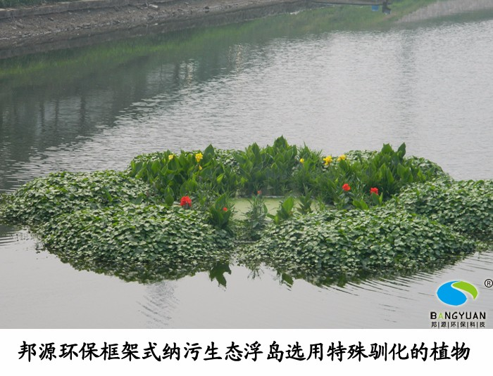 南京外港河黑臭河道治理項目應用框架式人工生態納污浮島效果圖