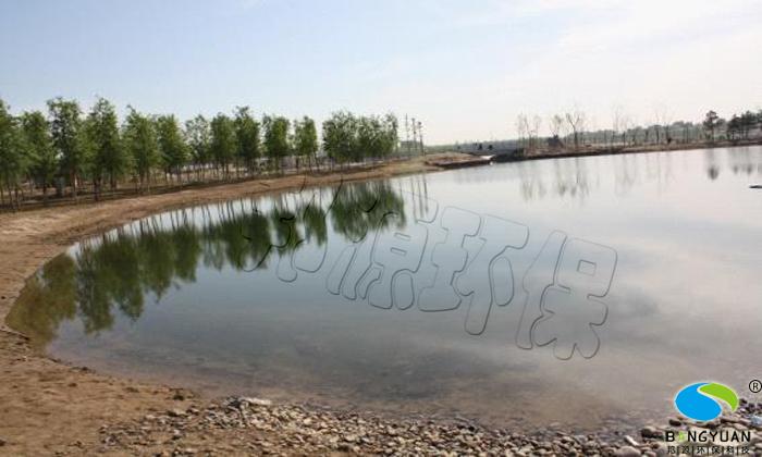 小湖区北部水绵治理后,水绵完全消除,水清澈见底