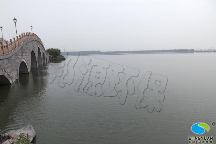 大面积蓝藻爆发,导致水体水质恶化,腥臭味严重
