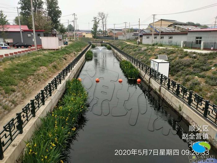 治理后,水體生態系統得以修復,水質大幅度提升
