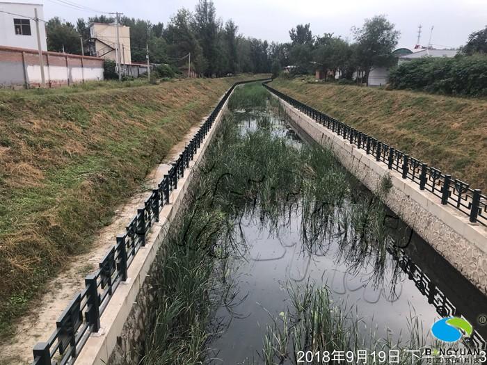 治理前,水體水質差,生態系統失衡
